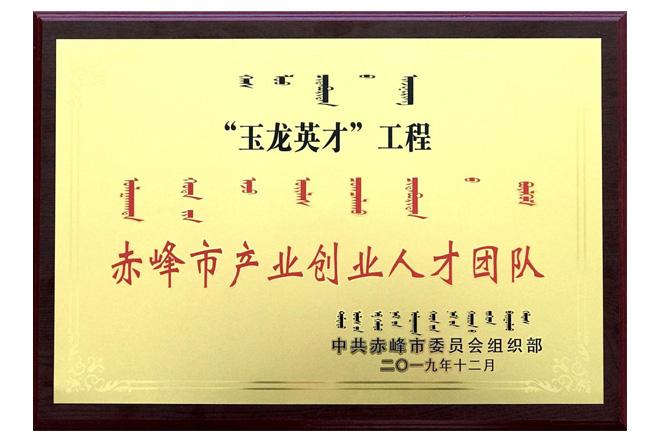 赤峰市产业创业人才团队